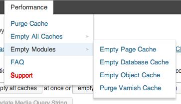 W3 Total Cache plugin - screenshot showing options to purge individual modules